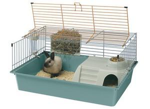 Место для жизни кролика