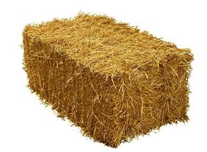 Сельское хозяйство и козы