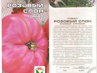 Характеристика и описание томата сорта Розовый слон