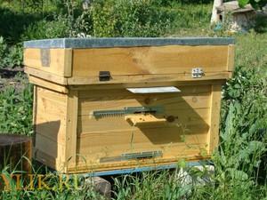 Как сделать пчелиный улей фото 743